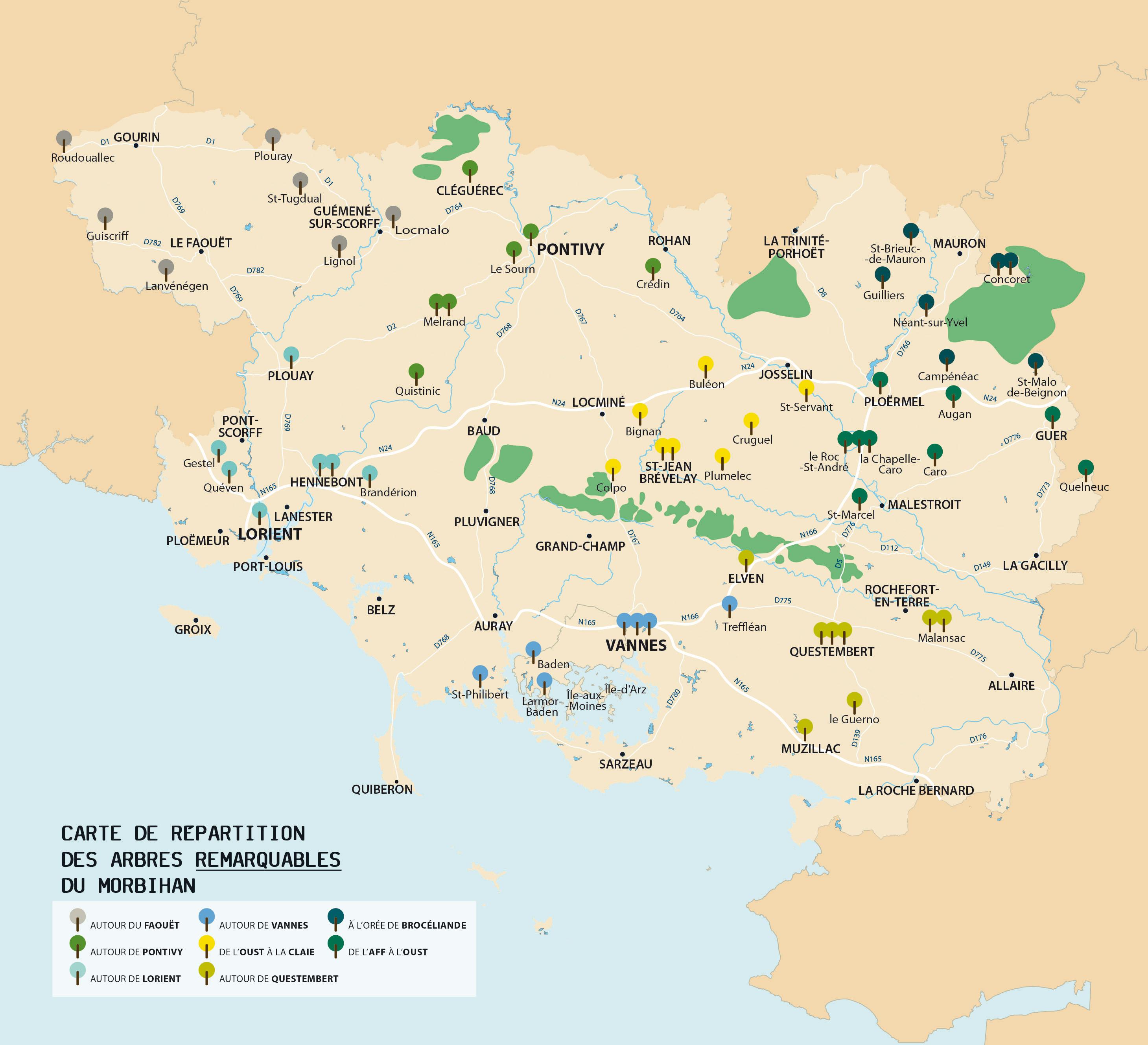 Les arbres remarquables du Morbihan   Conseil départemental du